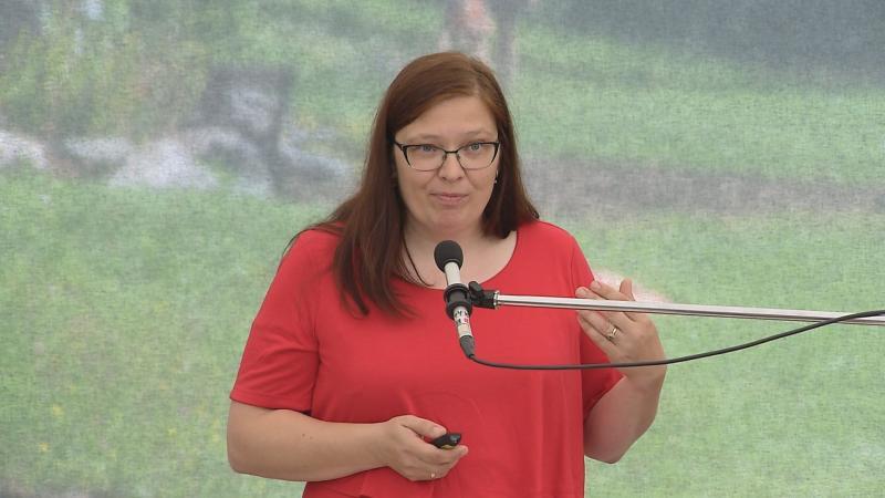 Image result for Jana Jochová aliance pro rodinu
